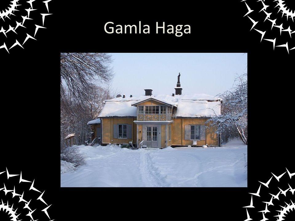 Gamla Haga