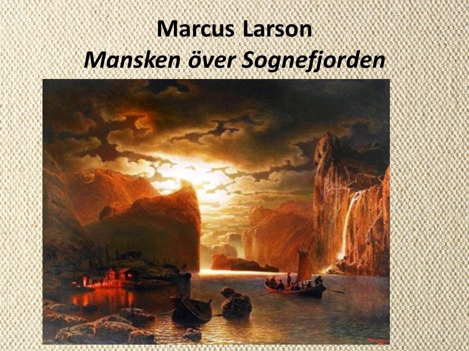 Marcus Larson Mansken över Sognefjorden