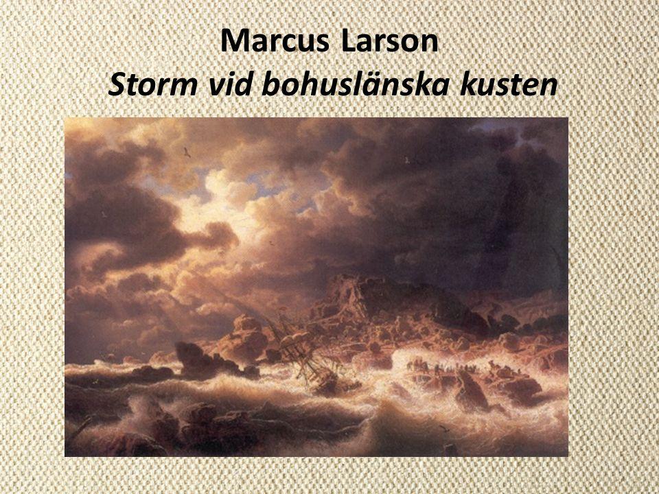Marcus Larson Storm vid bohuslänska kusten