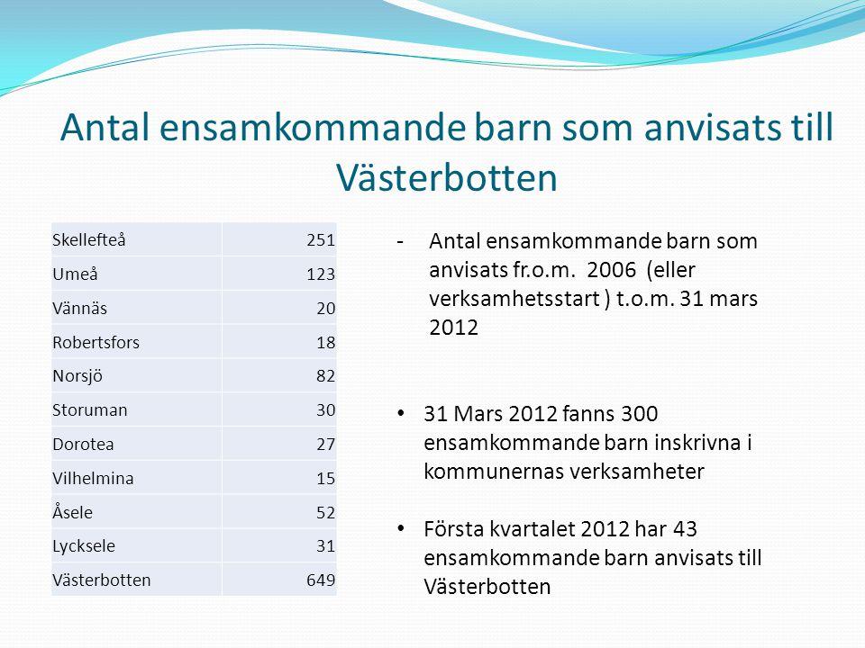 Antal ensamkommande barn som anvisats till Västerbotten Skellefteå251 Umeå123 Vännäs20 Robertsfors18 Norsjö82 Storuman30 Dorotea27 Vilhelmina15 Åsele5