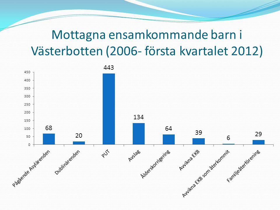 Problematiskt med siffror och statistik för verksamhetshistorik Hög arbetsbelastning Avsaknad på efterfrågan från politiskt håll
