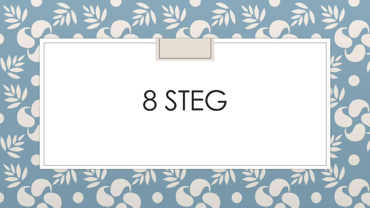 8 STEG