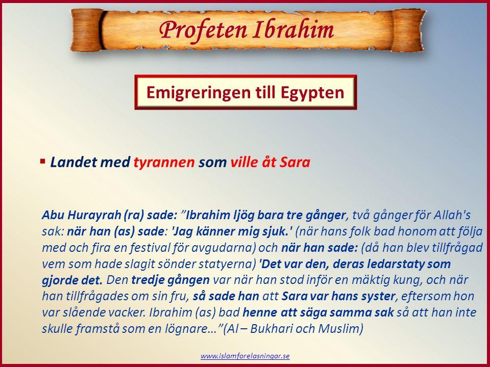 www.islamforelasningar.se  Landet med tyrannen som ville åt Sara Profeten Ibrahim Emigreringen till Egypten Abu Hurayrah (ra) sade: Ibrahim ljög bara tre gånger, två gånger för Allah s sak: när han (as) sade: Jag känner mig sjuk. (när hans folk bad honom att följa med och fira en festival för avgudarna) och när han sade: (då han blev tillfrågad vem som hade slagit sönder statyerna) Det var den, deras ledarstaty som gjorde det.