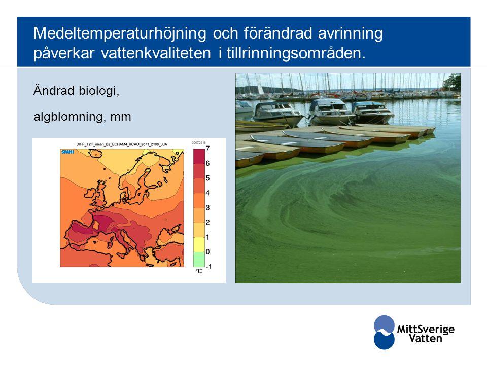 Ändrad biologi, algblomning, mm Medeltemperaturhöjning och förändrad avrinning påverkar vattenkvaliteten i tillrinningsområden.