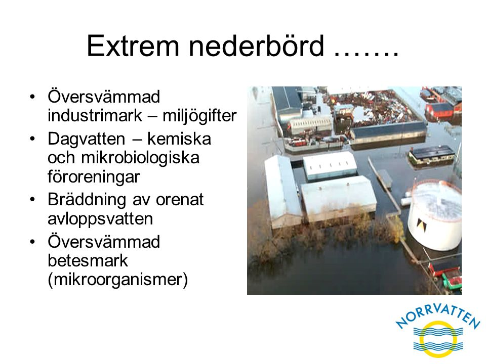 Extrem nederbörd ……. Översvämmad industrimark – miljögifter Dagvatten – kemiska och mikrobiologiska föroreningar Bräddning av orenat avloppsvatten Öve