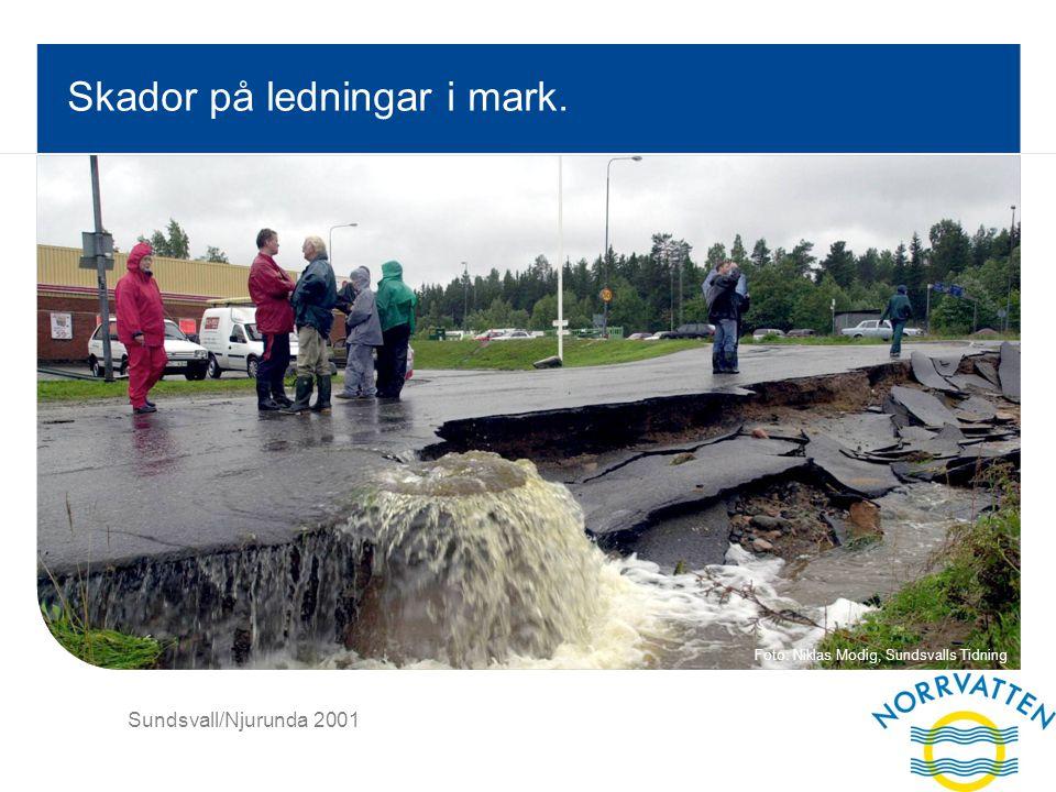 Skador på ledningar i mark. Sundsvall/Njurunda 2001 Foto: Niklas Modig, Sundsvalls Tidning