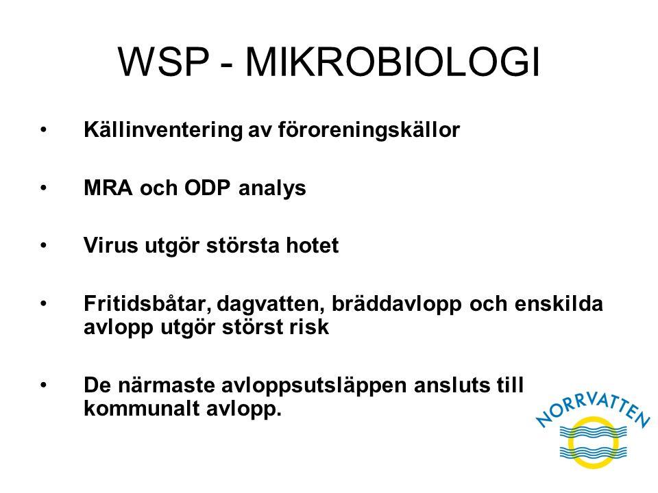 WSP - MIKROBIOLOGI Källinventering av föroreningskällor MRA och ODP analys Virus utgör största hotet Fritidsbåtar, dagvatten, bräddavlopp och enskilda