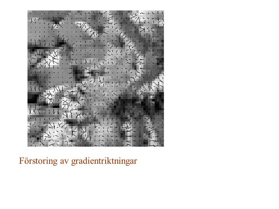 Förstoring av gradientriktningar