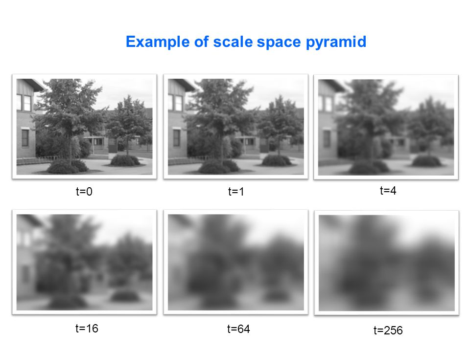 Example of scale space pyramid t=0t=1 t=4 t=16 t=64 t=256