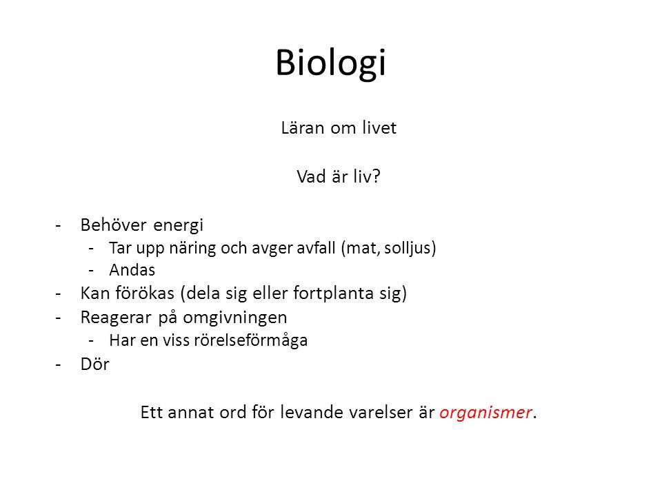 Biologi Läran om livet Vad är liv? -Behöver energi -Tar upp näring och avger avfall (mat, solljus) -Andas -Kan förökas (dela sig eller fortplanta sig)