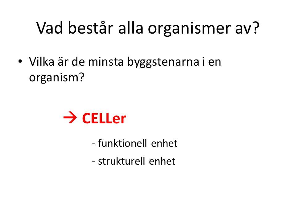 Vad består alla organismer av? Vilka är de minsta byggstenarna i en organism?  CELLer - funktionell enhet - strukturell enhet