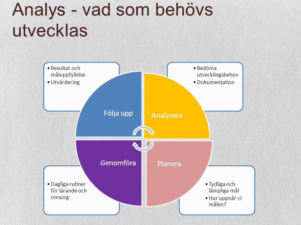 Analys - vad som behövs utvecklas Tydliga och lämpliga mål Hur uppnår vi målen? Dagliga rutiner för lärande och omsorg Bedöma utvecklingsbehov Dokumen