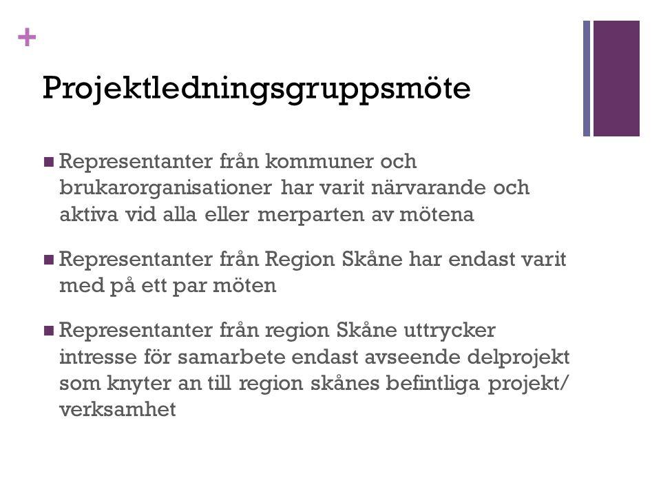 + Projektledningsgruppsmöte Representanter från kommuner och brukarorganisationer har varit närvarande och aktiva vid alla eller merparten av mötena Representanter från Region Skåne har endast varit med på ett par möten Representanter från region Skåne uttrycker intresse för samarbete endast avseende delprojekt som knyter an till region skånes befintliga projekt/ verksamhet