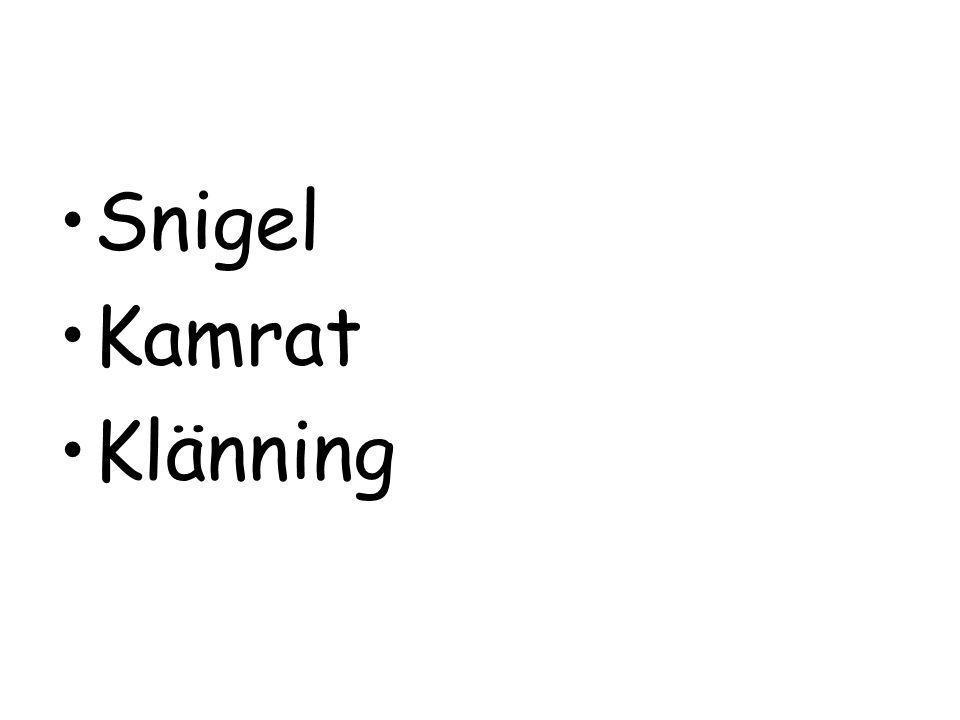 Snigel Kamrat Klänning