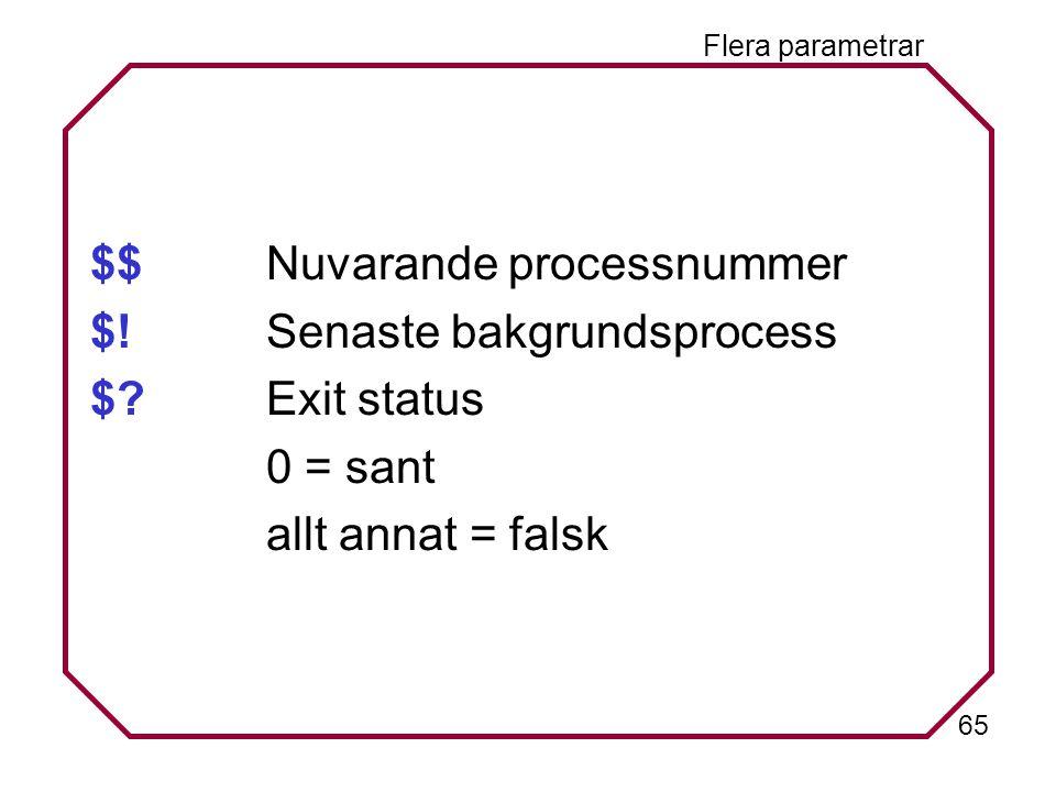 65 Flera parametrar $$Nuvarande processnummer $!Senaste bakgrundsprocess $?Exit status 0 = sant allt annat = falsk