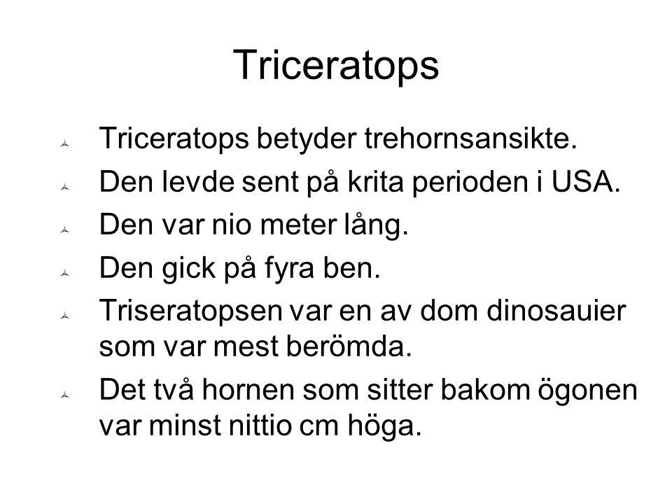 Triceratops  Triceratopsens huvud var tredjedel av hela kropps längden.