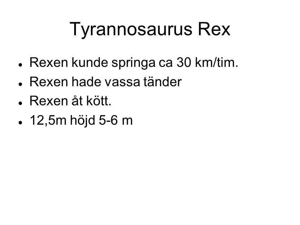 Rexen kunde springa ca 30 km/tim. Rexen hade vassa tänder Rexen åt kött. 12,5m höjd 5-6 m Tyrannosaurus Rex