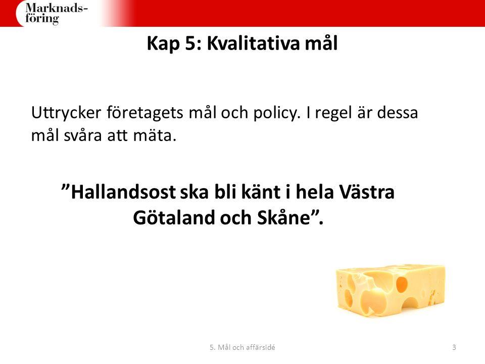 """Uttrycker företagets mål och policy. I regel är dessa mål svåra att mäta. """"Hallandsost ska bli känt i hela Västra Götaland och Skåne"""". Kap 5: Kvalitat"""