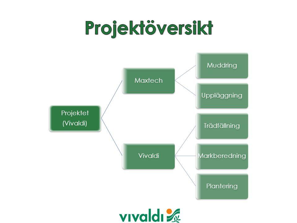 Projektet (Vivaldi) MaxtechMuddringUppläggningVivaldiTrädfällningMarkberedningPlantering