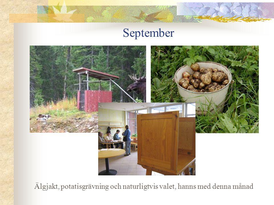 September Älgjakt, potatisgrävning och naturligtvis valet, hanns med denna månad