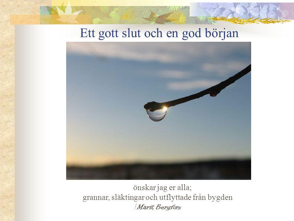 Ett gott slut och en god början önskar jag er alla; grannar, släktingar och utflyttade från bygden / Marit Bergfors