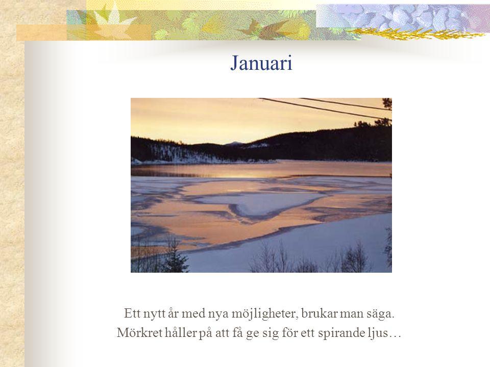 Januari Ett nytt år med nya möjligheter, brukar man säga.