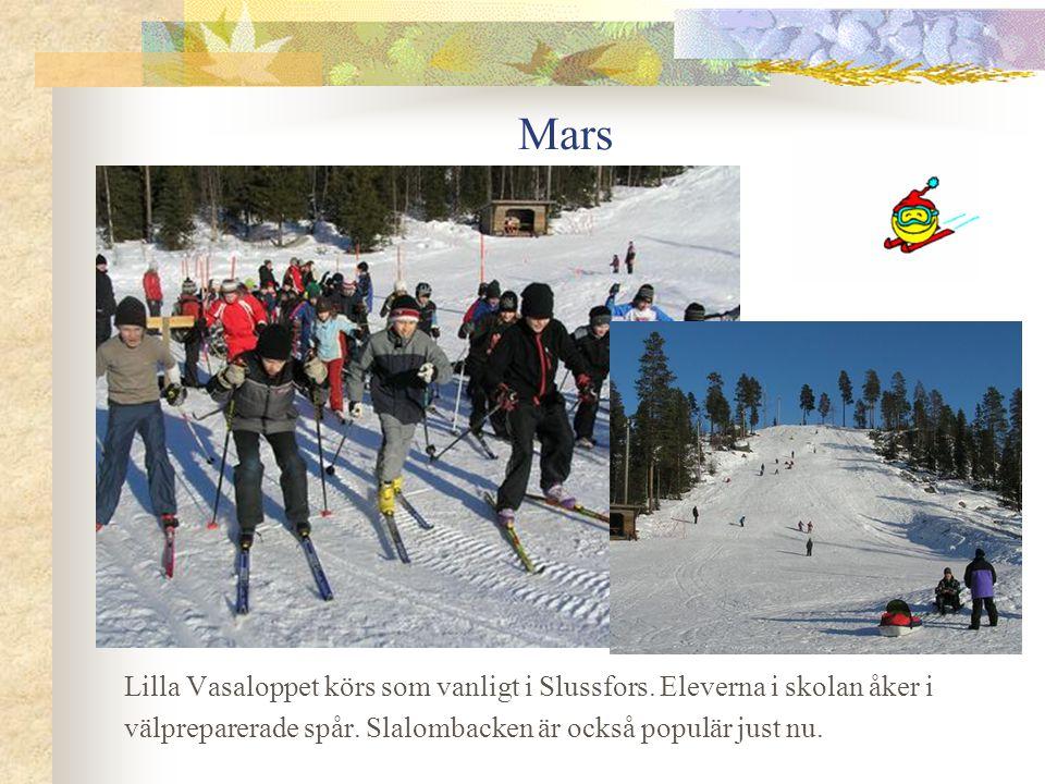 Mars Lilla Vasaloppet körs som vanligt i Slussfors.