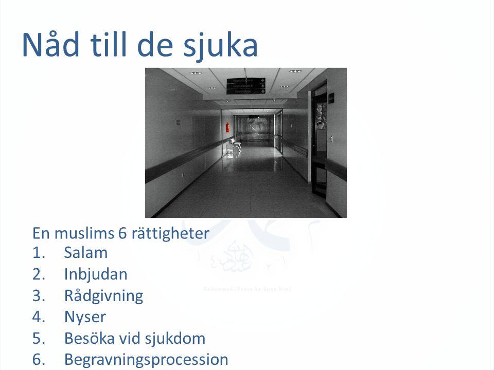 Nåd till de sjuka En muslims 6 rättigheter 1. Salam 2. Inbjudan 3. Rådgivning 4. Nyser 5. Besöka vid sjukdom 6. Begravningsprocession