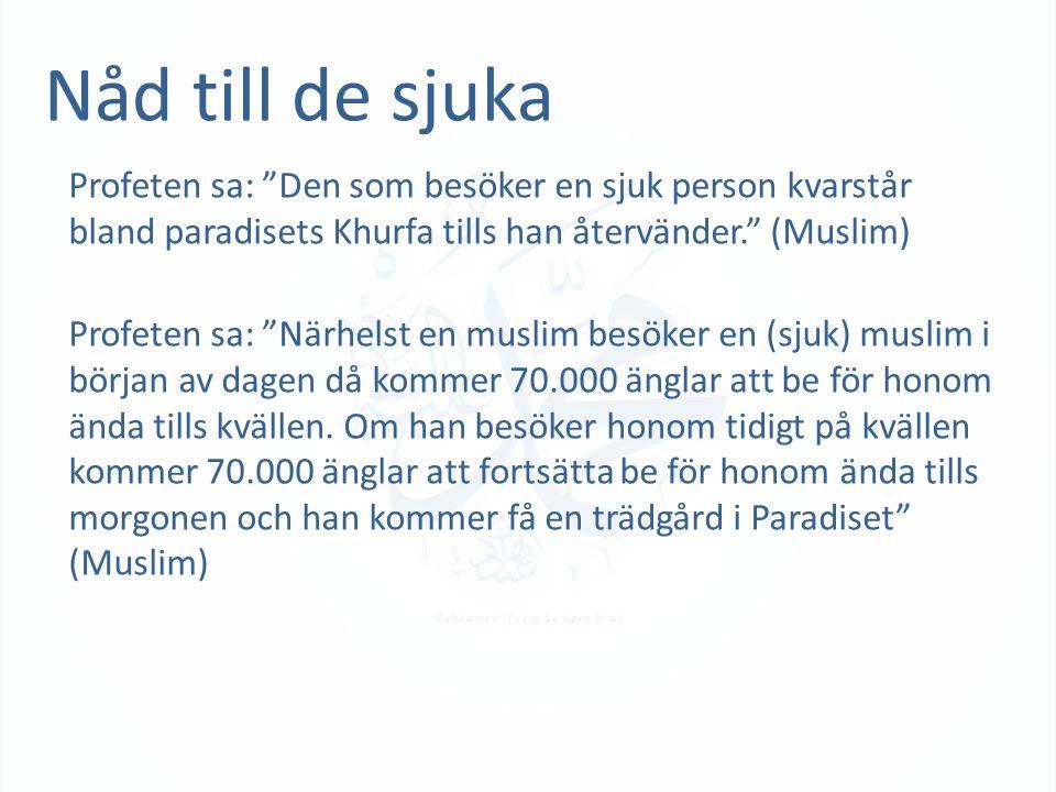 Nåd till de sjuka Profeten sa: Den som besöker en sjuk person kvarstår bland paradisets Khurfa tills han återvänder. (Muslim) Profeten sa: Närhelst en muslim besöker en (sjuk) muslim i början av dagen då kommer 70.000 änglar att be för honom ända tills kvällen.