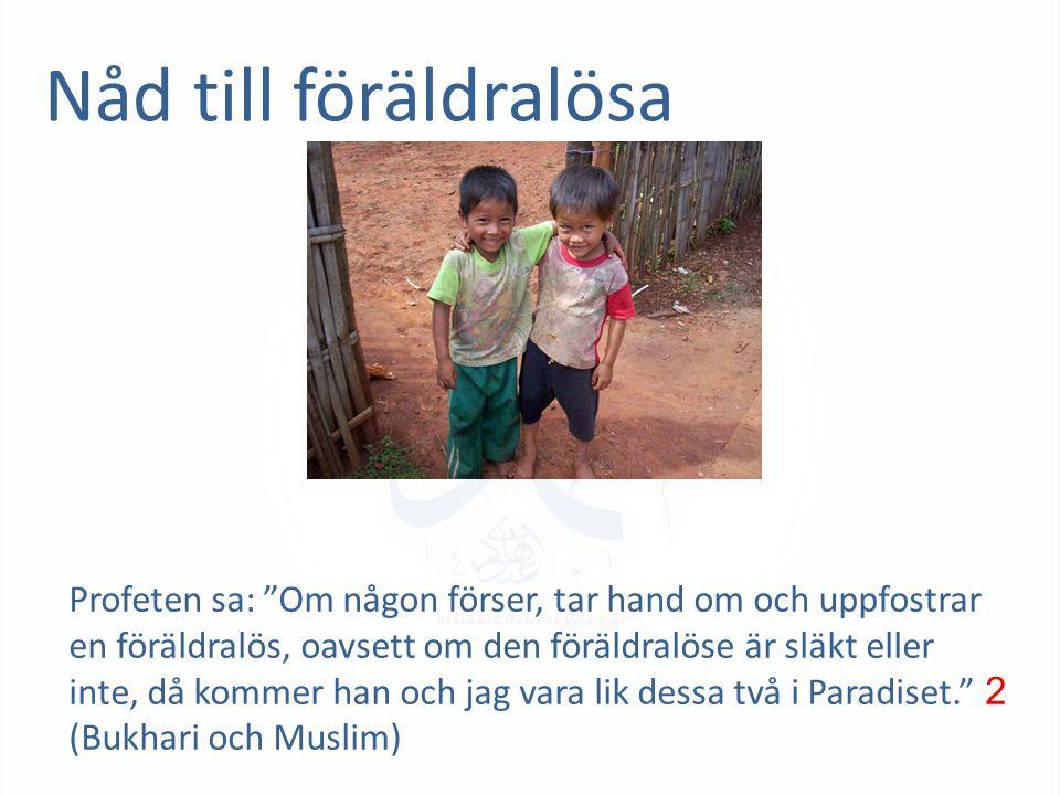 """Nåd till föräldralösa Profeten sa: """"Om någon förser, tar hand om och uppfostrar en föräldralös, oavsett om den föräldralöse är släkt eller inte, då ko"""