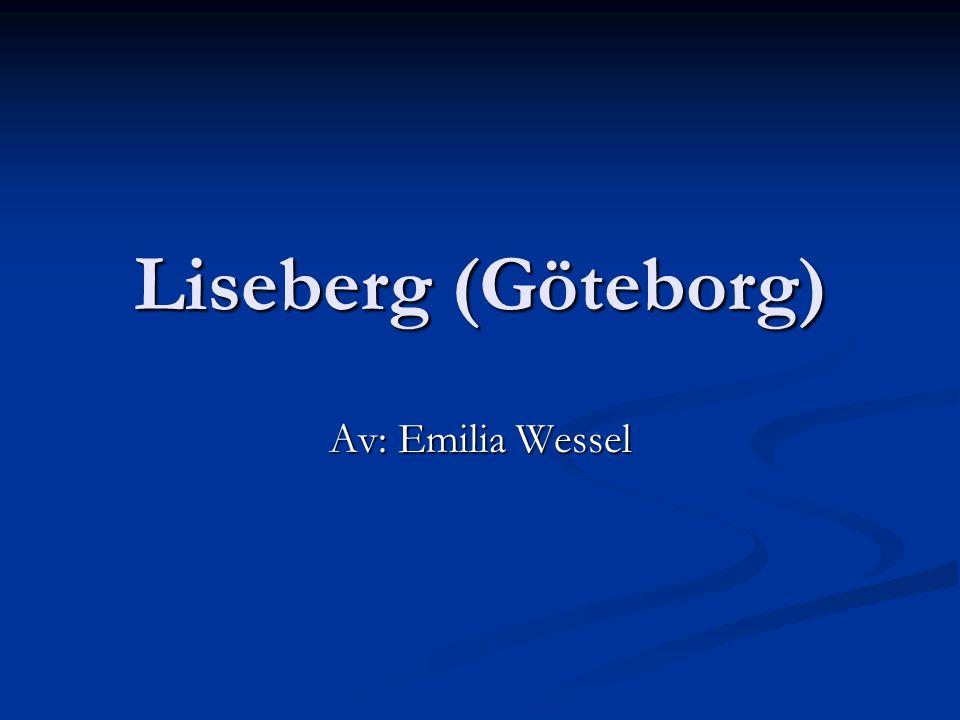 Liseberg (Göteborg) Av: Emilia Wessel