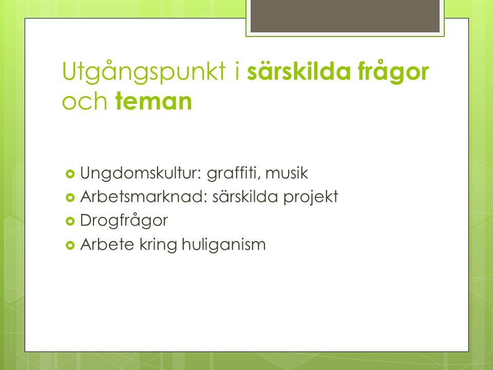 Utgångspunkt i särskilda frågor och teman  Ungdomskultur: graffiti, musik  Arbetsmarknad: särskilda projekt  Drogfrågor  Arbete kring huliganism
