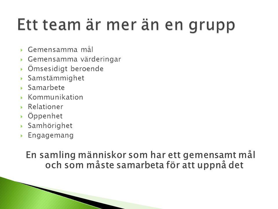  Gemensamma mål  Gemensamma värderingar  Ömsesidigt beroende  Samstämmighet  Samarbete  Kommunikation  Relationer  Öppenhet  Samhörighet  Engagemang En samling människor som har ett gemensamt mål och som måste samarbeta för att uppnå det