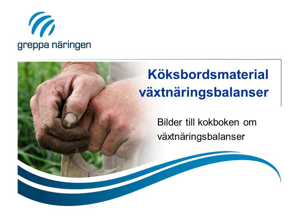 Flöden in och ut från gården Kvävenedfall kg N/ha Produkter in N: kg/ha P: kg/ha K: kg/ha Kvävefixering kg N/ha Produkter ut N: kg/ha P: kg/ha K: kg/ha Överskott kg/ha N P K Ammoniak- avgång kg N/ha Denitri- fikation kg N/ha Utlakning kg N/ha Till mull kg N/ha Från mull kg N/ha