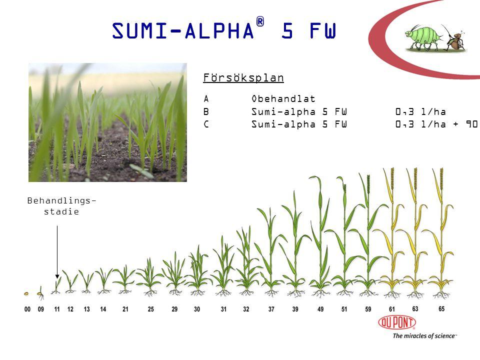 SUMI-ALPHA ® 5 FW Behandlings- stadie AObehandlat BSumi-alpha 5 FW0,3 l/ha CSumi-alpha 5 FW0,3 l/ha + 90 % munstycke Försöksplan