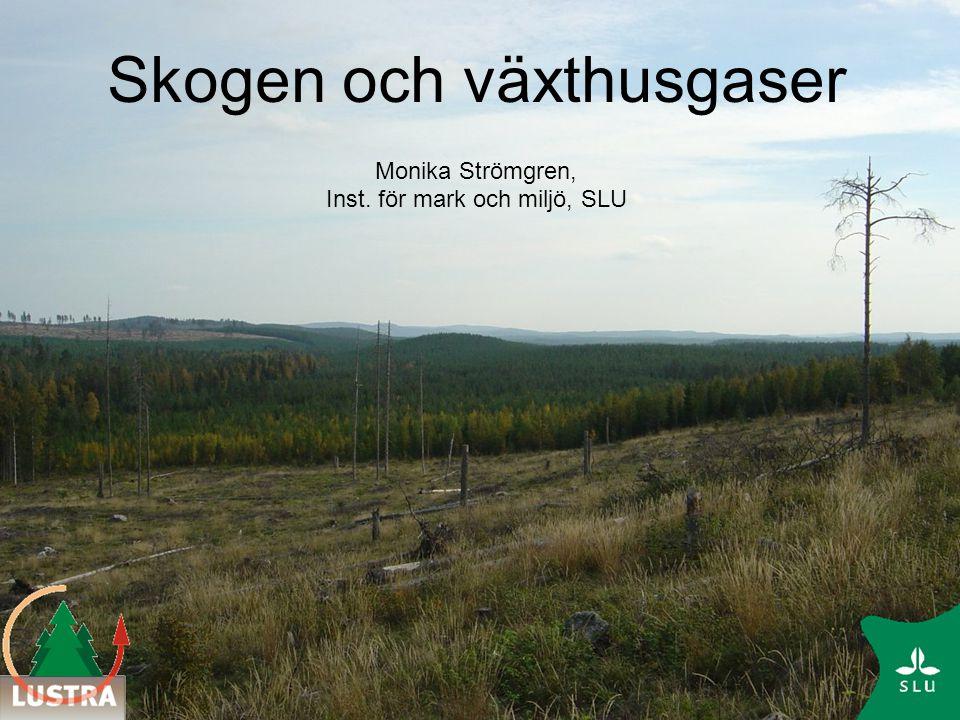 Skogen och växthusgaserna Hela omloppstiden är viktig för skogens kolbalans Kort etableringstid, hög produktion, aktiv skötsel och gödsling gynnar kolinbindningen Hur skogen används efter avverkning är av betydelse Sveriges skogar är en kolsänka Se upp för den dikade skogsmarken.