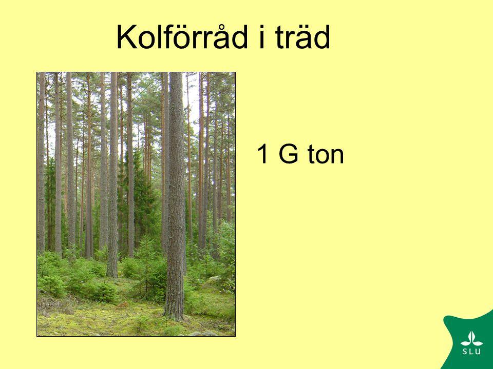 Kolbalans för Flakaliden  S -43  B 318 R s 590 R f 391 L f 13 L r 162 GPP 1256 R 981 NEE = GPP - R 275 g C m -2 Enl.