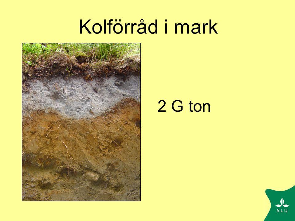 Kol ton/ha Träd: 45 Mark: 85 Totalt: 130