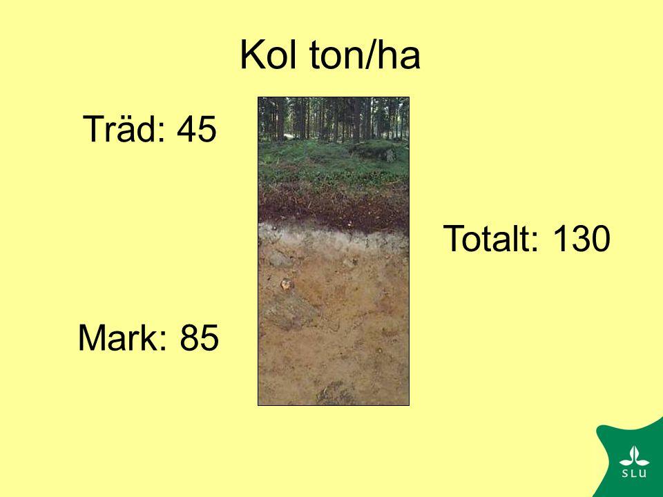 Kolbalans i Knottåsen g C m -2 yr -1 Fotosyntes 916 Växtrespiration 559 Förnafall 92 130 Markrespiration 215 +135 + 10 Från Berggren Kleja et al, Biogeochemistry 2008
