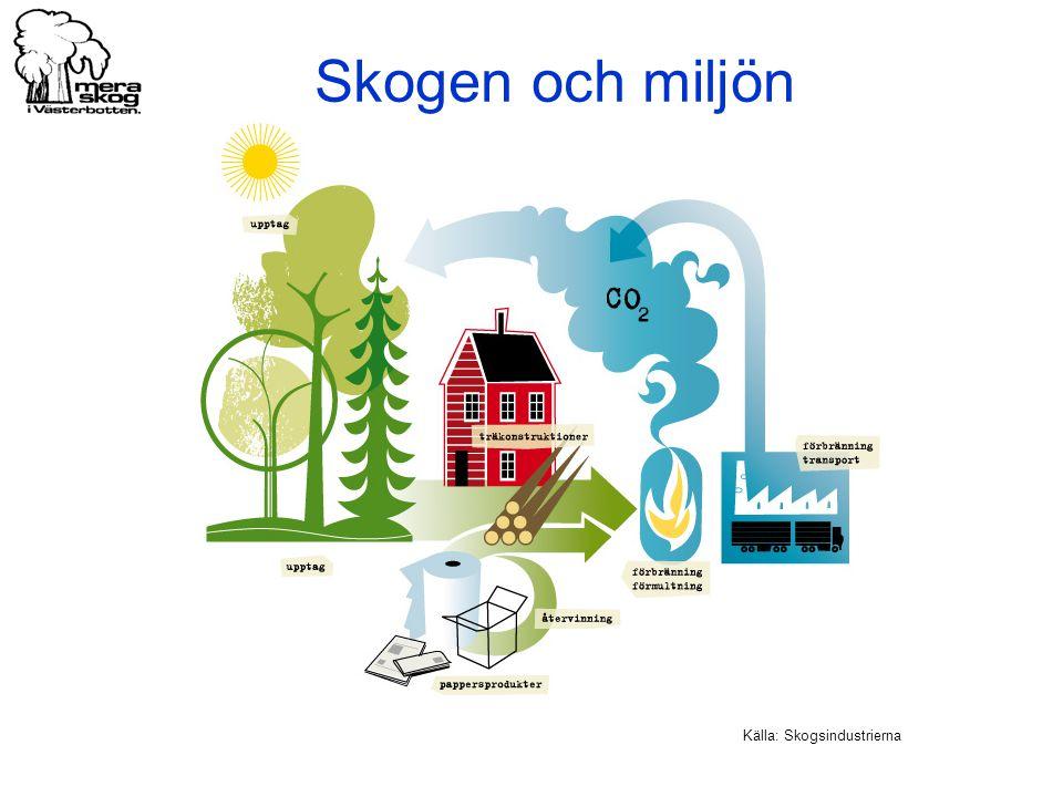 Källa: Skogsindustrierna Skogen och miljön