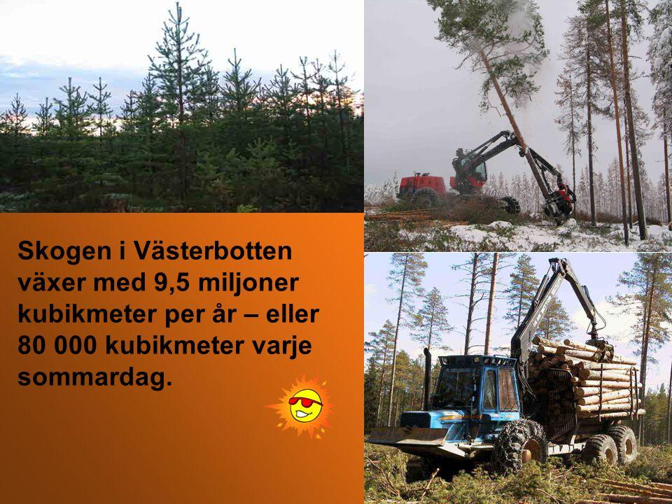 Tillväxten är större än avverkningen Källa: Riksskogstaxeringen, Skogsstyrelsen Sveriges totala virkesförråd 3 miljarder m 3 sk* Tillväxt per år 105 miljoner m 3 sk* Avverkning per år 85 miljoner m 3 sk* *) Skogskubikmeter (stamvolym ovan stubbskäret inklusive topp och bark)