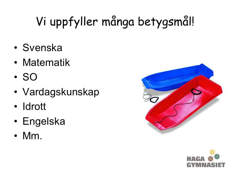Vi uppfyller många betygsmål! Svenska Matematik SO Vardagskunskap Idrott Engelska Mm.
