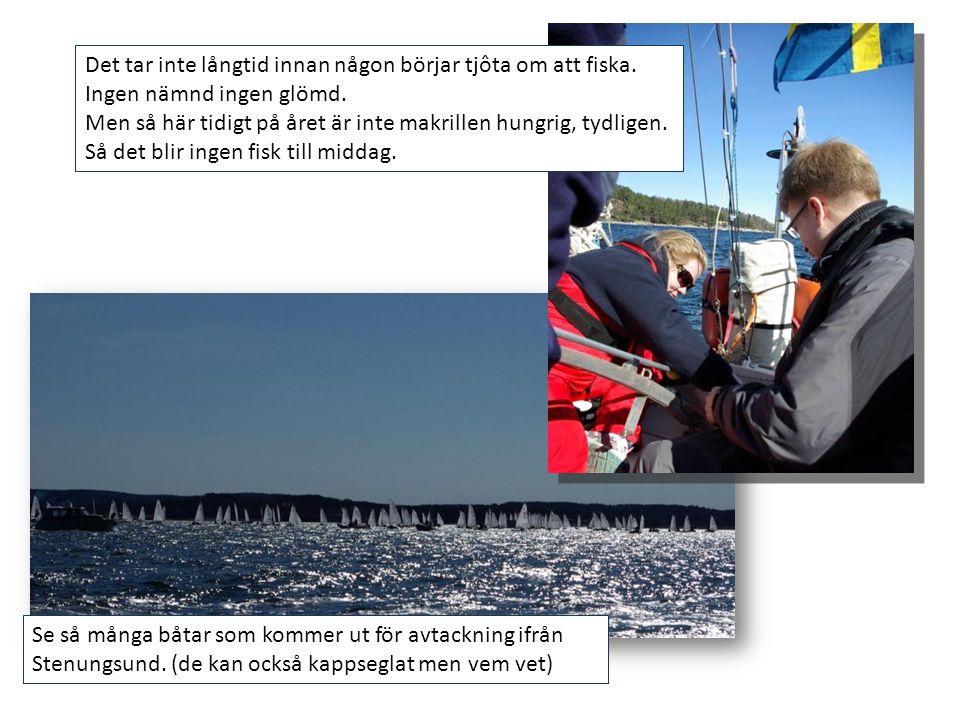 Se så många båtar som kommer ut för avtackning ifrån Stenungsund. (de kan också kappseglat men vem vet) Det tar inte långtid innan någon börjar tjôta