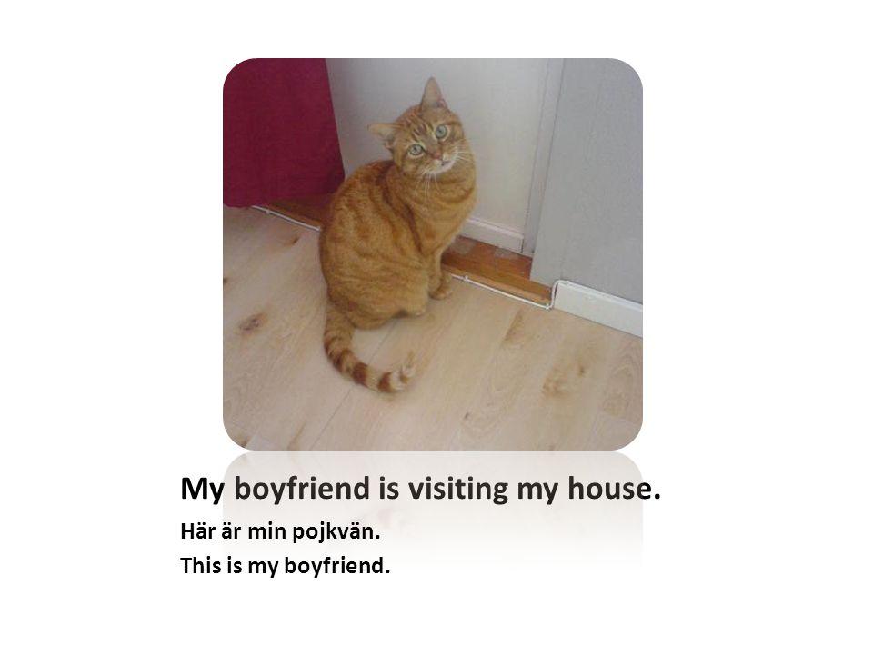 My boyfriend is visiting my house. Här är min pojkvän. This is my boyfriend.