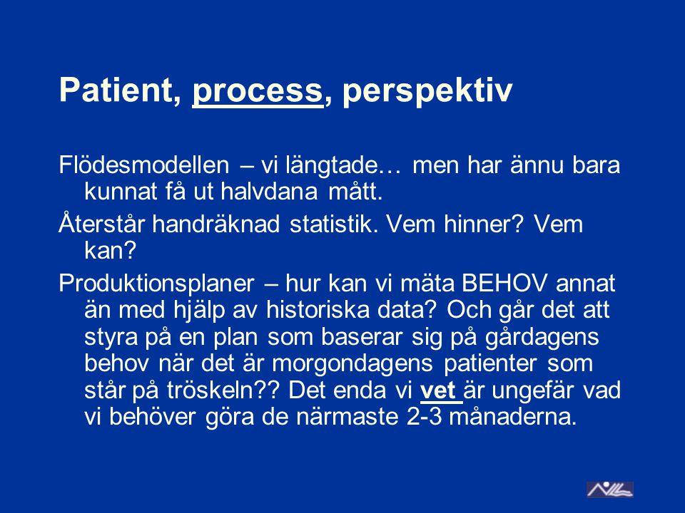 Patient, process, perspektiv Flödesmodellen – vi längtade… men har ännu bara kunnat få ut halvdana mått. Återstår handräknad statistik. Vem hinner? Ve