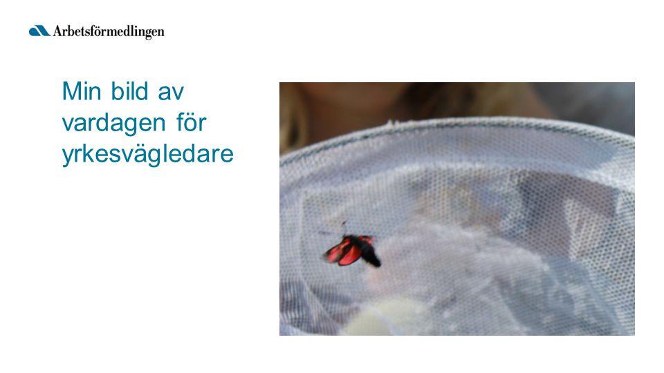 Källa: Yrkesregistret för 2011, SCB Yrkesvärlden har en lång svans