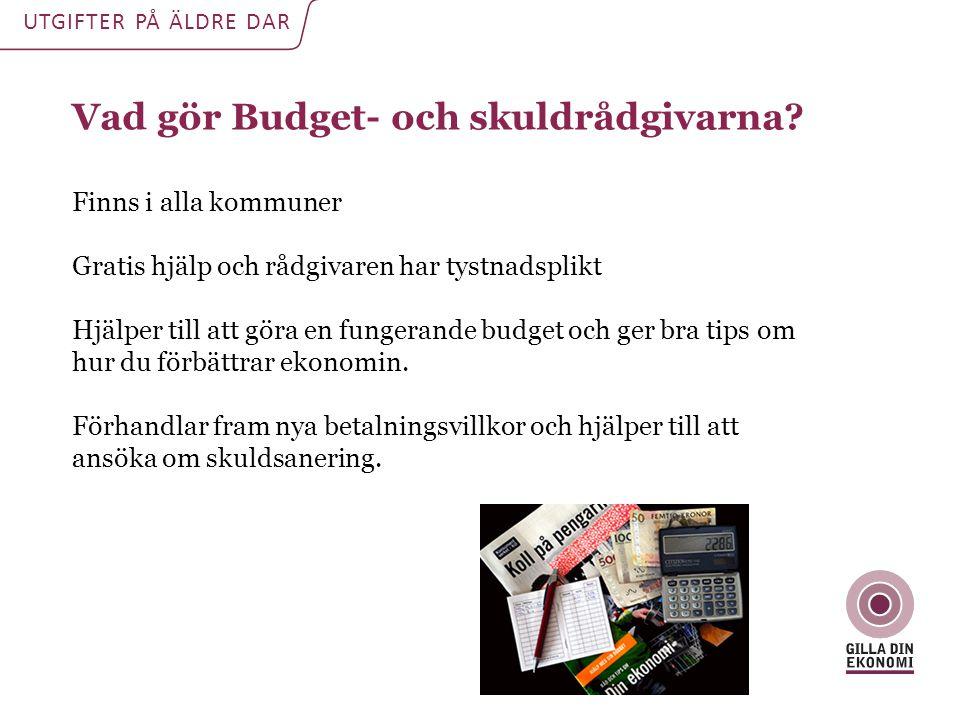 Vad gör Budget- och skuldrådgivarna.