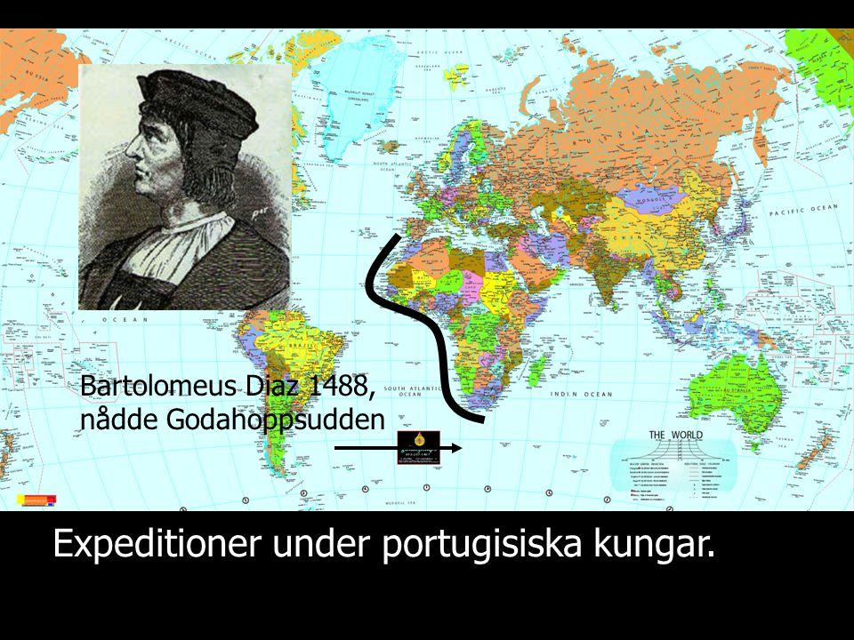 Expeditioner under portugisiska kungar. Bartolomeus Diaz 1488, nådde Godahoppsudden