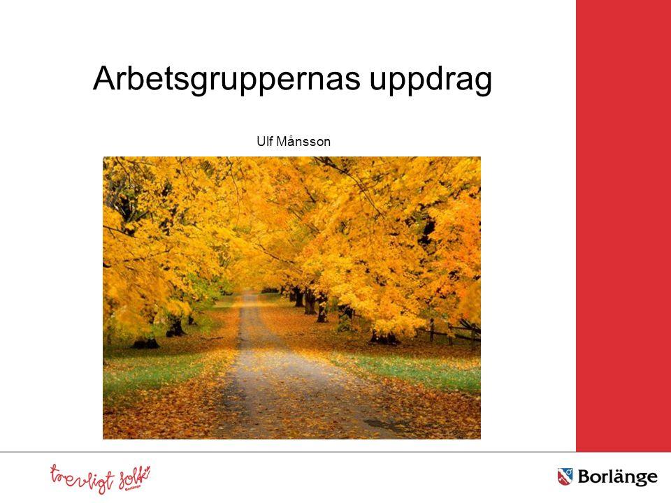 Arbetsgruppernas uppdrag Ulf Månsson