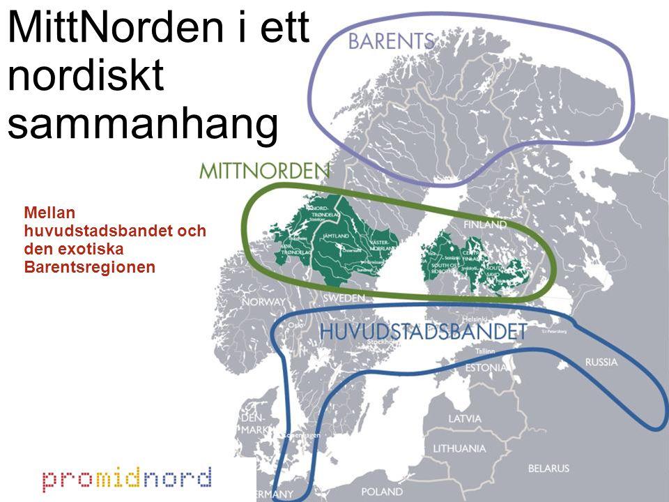 MittNorden i ett nordiskt sammanhang Mellan huvudstadsbandet och den exotiska Barentsregionen
